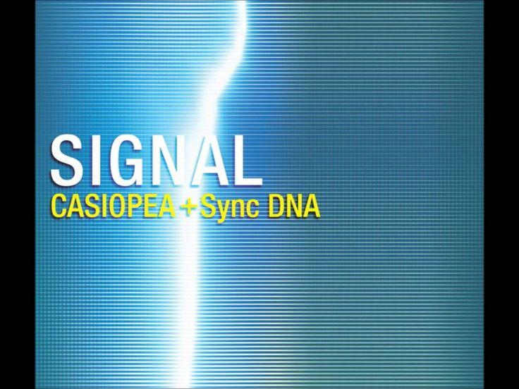 Casiopea - Mist