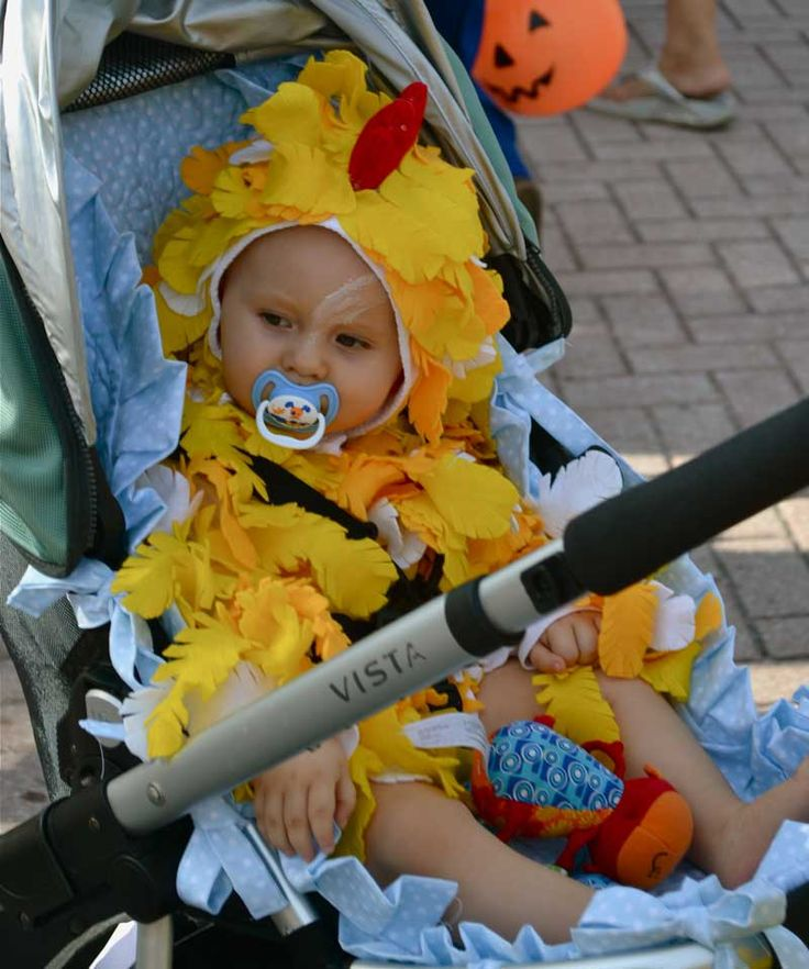 Saw this little cutie at a kids' Halloween parade in Venice, FL. Her mom was cute, too, dressed as Momma Big Bird