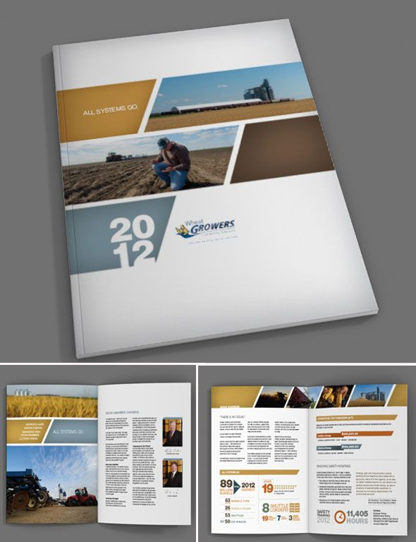brown wheat growers annual report design