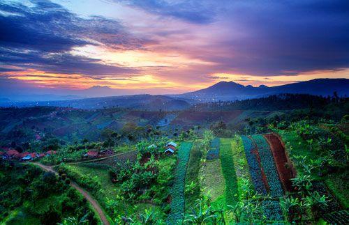 Destinasi paling baru dan paling beda di kota Bandung! Anda akan diajak menikmati pemandangan deretan hutan pinus di Bukit Moko dan indahnya kota Bandung dari atas ketinggian di Tebing Keraton. Semua ini hanya dengan Rp 199.000,- saja #panoramagroup
