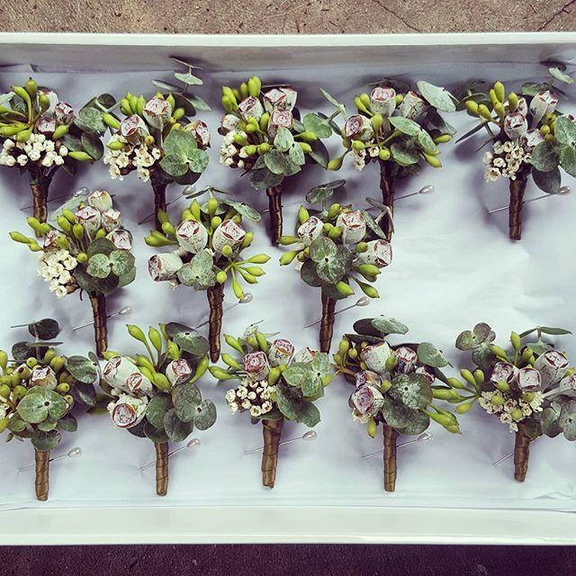 Australia native buttonhole line up...💚💚💚