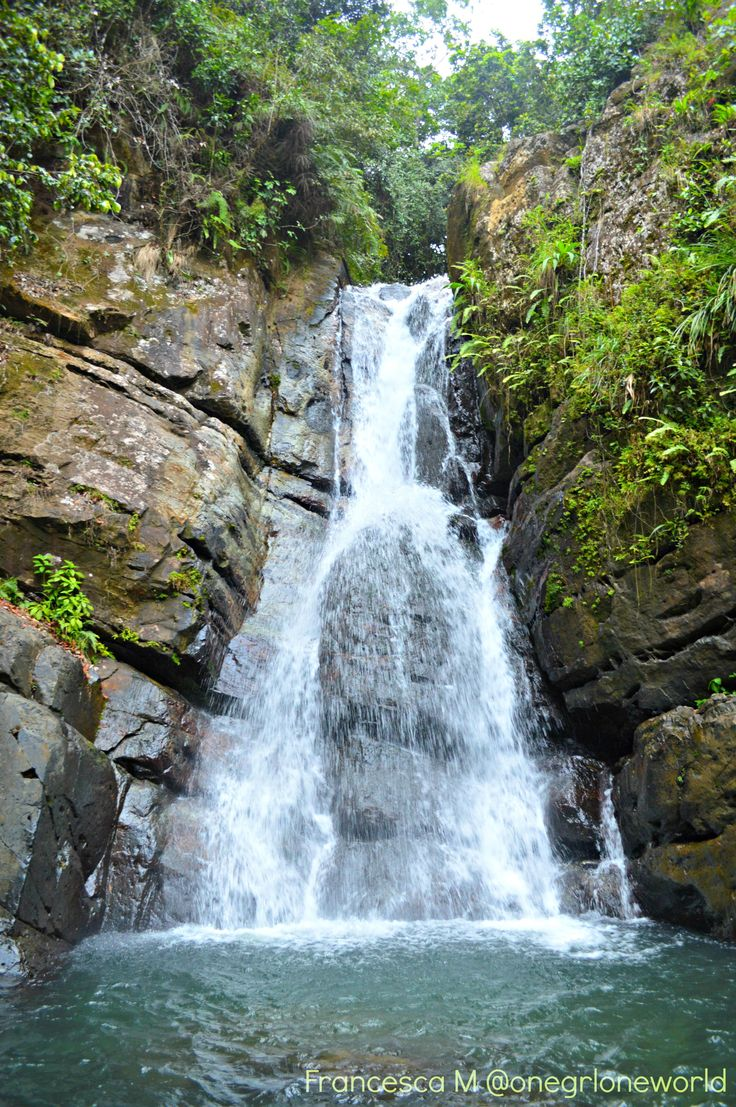 if you're going to visit, this is the correct address: Route 191, El Yunque National Forest, Puerto Rico