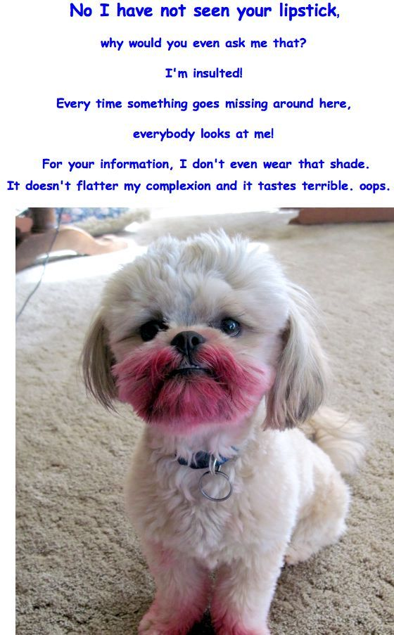 Worst Fashion Blogging Pictures | Page 414 | Fashion / Beauty Bloggers | GOMI Forums - GOMI * BLOG * GOMIBLOG