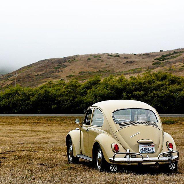 VW Love | Prints & Artist Designed Goods Inspired by Life's Adventures  TheSpectrumWorkshop.com