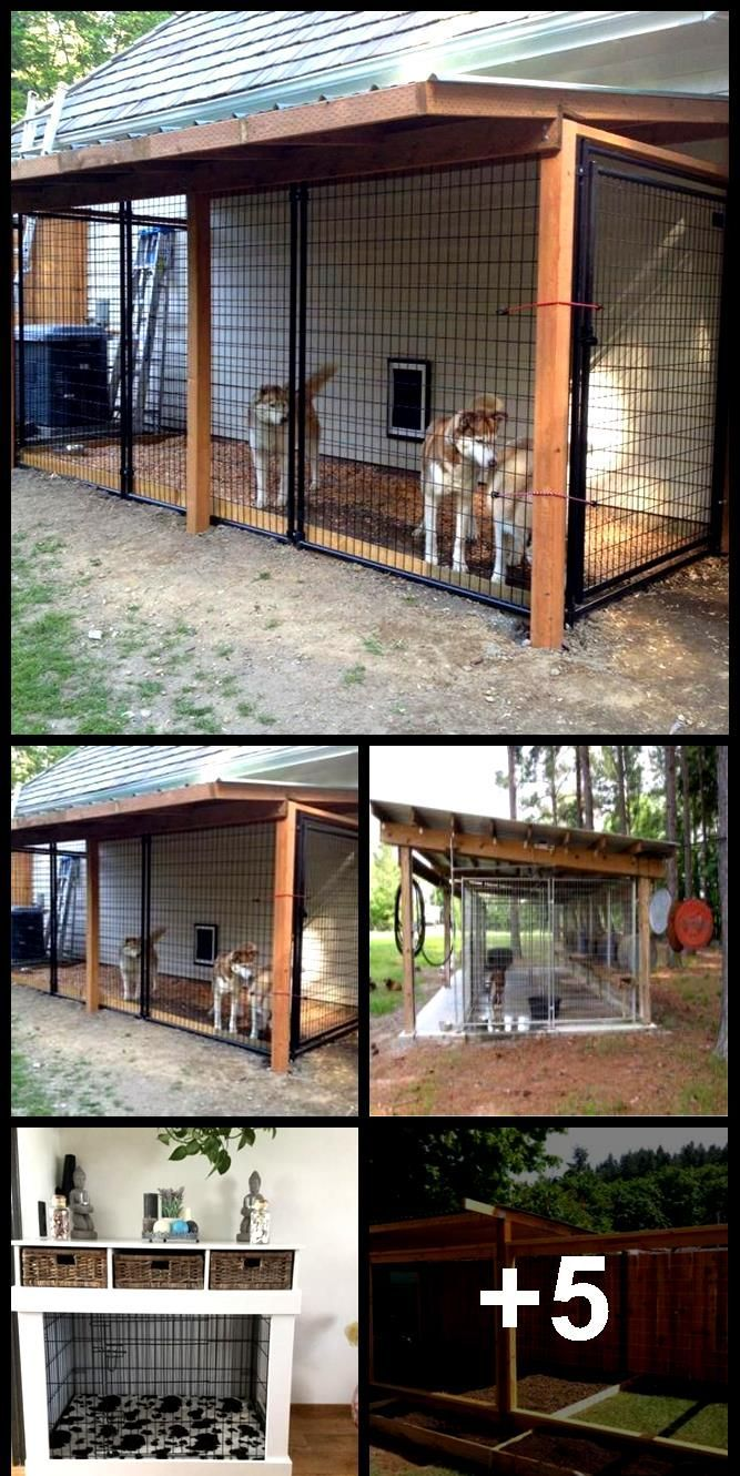 70 Ideas For Backyard Dog Kennel Outdoor In 2020 Dog Kennel
