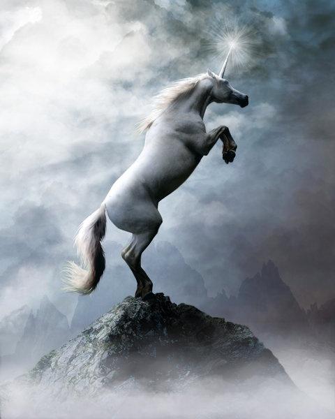 Unicorn: Fantasy, Unicorn, Beautiful Unicorns, Except, Mystic Creatures, Mythical Creatures, The World, Unicorns Pegasus, Animal