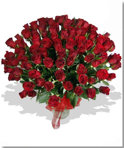 Espectacular de 100 rosas