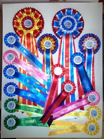 Escarapelas para caninos de Candice RosettesSpain - Google+ y www.escarapelas.com.es or www.rosettes.com.es