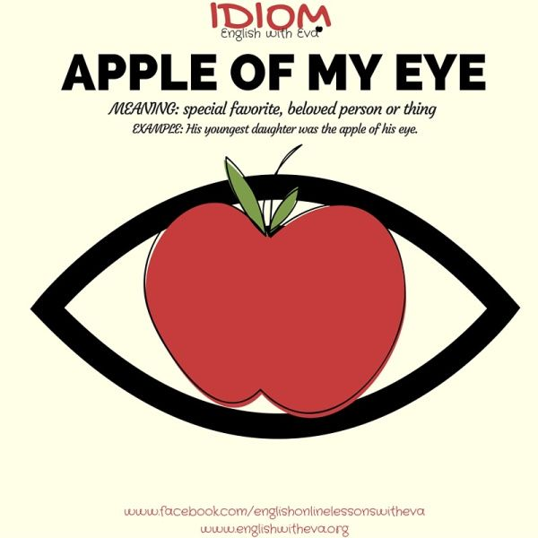 Apple Of My Eye English Idioms English Vocabulary Summer Vocabulary