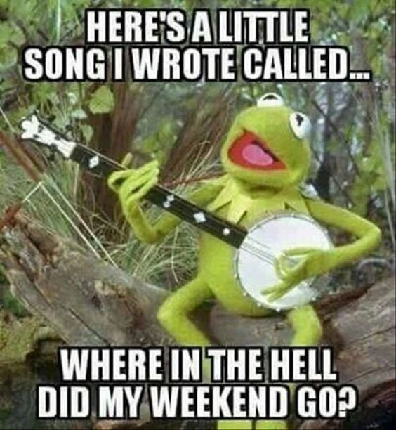 Here's a little song I️ wrote called...where in the hell did my weekend go? Kermit the frog