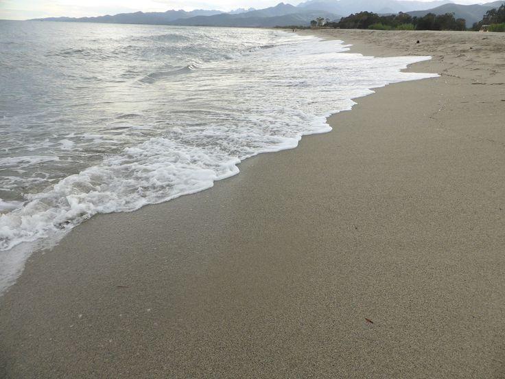 Beach on the eastern coast of Corsica