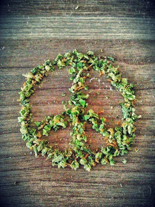 Peace and love = #GanjaGalsMarketing #Ganja #Gals #Cannabis #MMJ #Marketing #Gals4Ganja  www.GanjaGalsMarketing.com - @GGals_Marketing <3