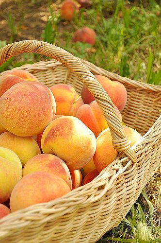 Theme inspired by fall hues, Hawaiian weather, and my southern roots...baskets of peaches...also great to give as favor baskets  #AGPinGiving