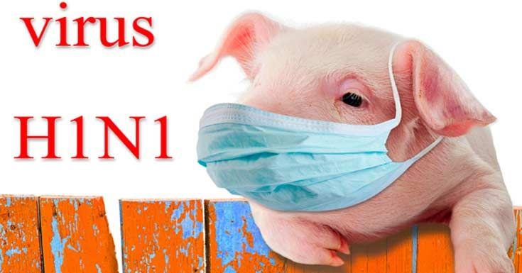 H1N1 Flu (Swine Flu): Symptoms, Causes, Risk, Treatments and More https://www.consumerhealthdigest.com/health-conditions/h1n1-flu-swine-flu.html