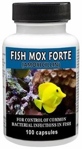 14 best aiboitics images on pinterest medical medical for Where can i buy fish mox