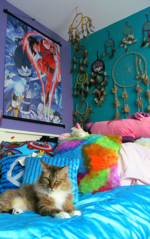 dragon ball z dbz goku dream room bedroom bed room