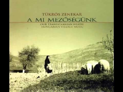 Tükrös zenekar: Magyarpalatkai menyasszonykísérő, csárdás és sűrű csárdás
