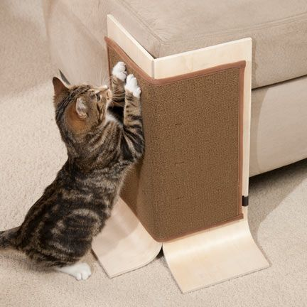 Has your cat focused her scratching efforts on your favorite sofa or chair? Save your furniture with the Sofa Safe Scratcher!