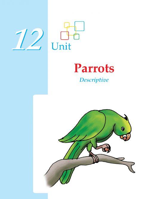 best writing skill images writing skills grade  grade 3 descriptive essay parrots writing wordzila com grade