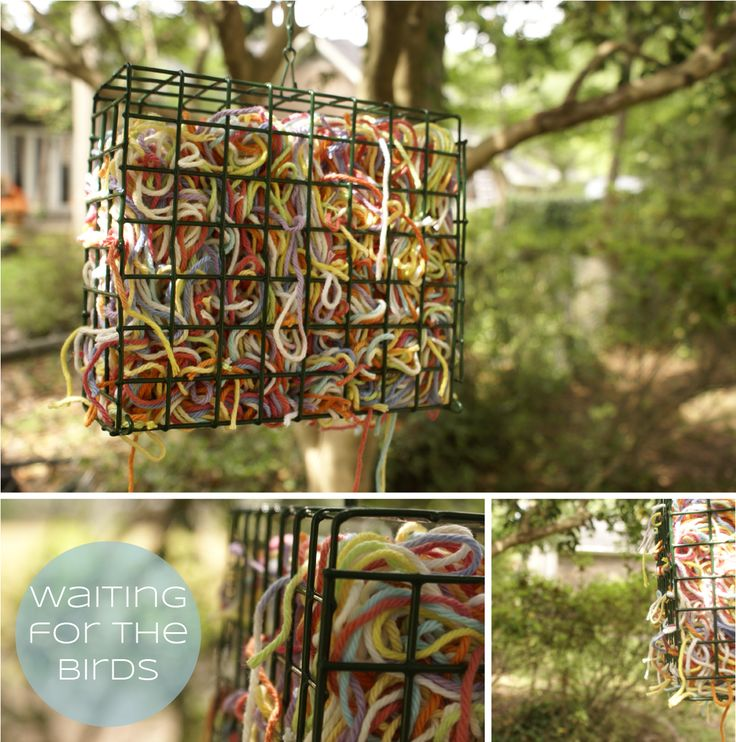 48 Best Images About Bird Feeders On Pinterest Recycled