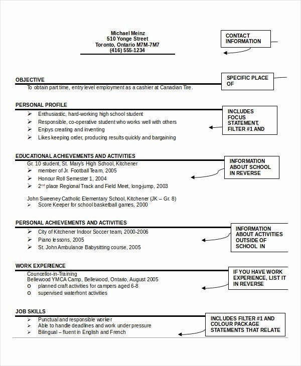 24 Best Student Sample Resume Templates: 40 Free Resume Templates Pdf In 2020