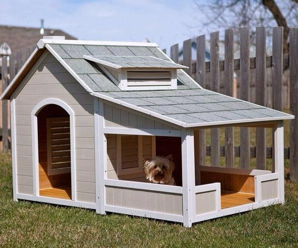7 best Cool stuff for dogs images on Pinterest   Ideas ...