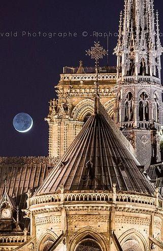 Notre Dame de Paris et la Lune depuis l'Île Saint Louis / Paris, France