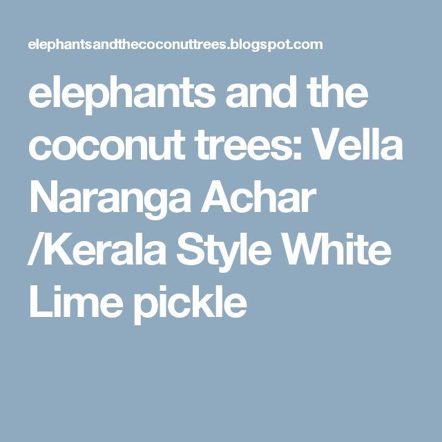elephants and the coconut trees: Vella Naranga Achar /Kerala Style White Lime pickle
