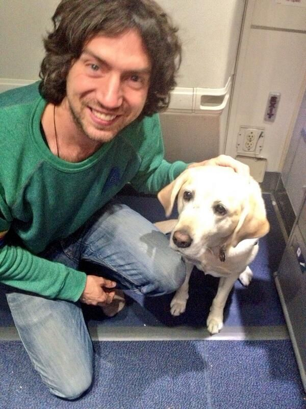 """@garysnowpatrol 26 Sep 2013 """"This awesome dog was on the plane. I swear to you. On the plane!"""""""