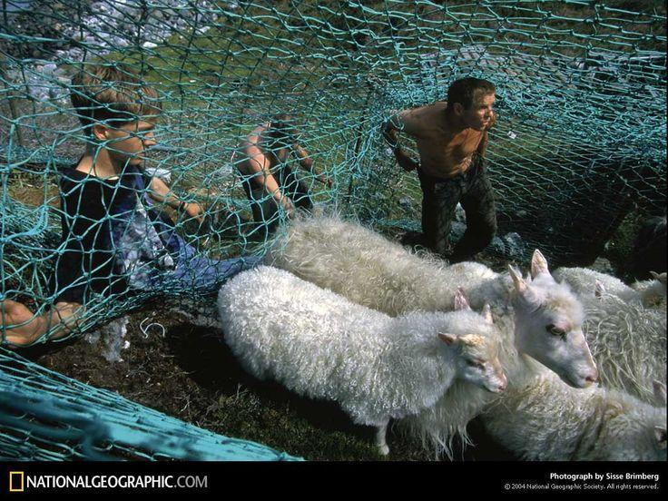 заставки на рабочий стол - Человек и животное: http://wallpapic.ru/national-geographic-photos/human-and-animal/wallpaper-38027