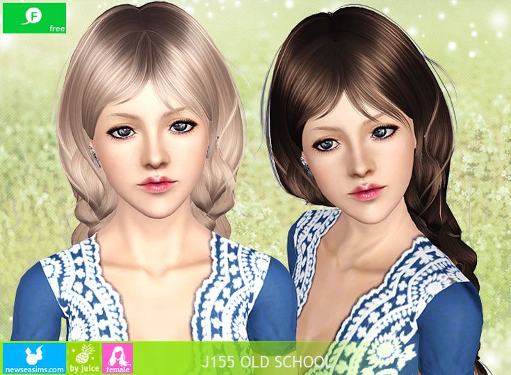 Hairstyles Braids Download: Hairstyle (Free) ALL AGES, Twin Plaits Female Hairstyle