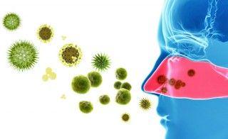 Nasennebenhöhlenentzündung – Natürliche Massnahmen