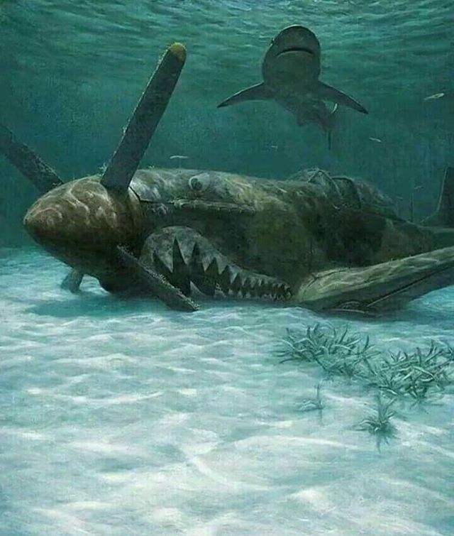 418 Best Shipwrecks Are CREEPY! Anything Under Water Is