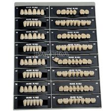 Dental Denture Resin False Teeth Kit T8 L8 34U 34L A2 Synthetic Polymer FDA CE