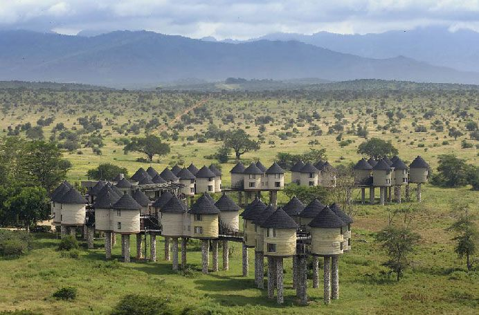 Tsavo park, Kenya.  Sarova Salt Lick lodge.  Borders a waterhole, guaranteed to see large animals every month except the wetter months of May, June and November.