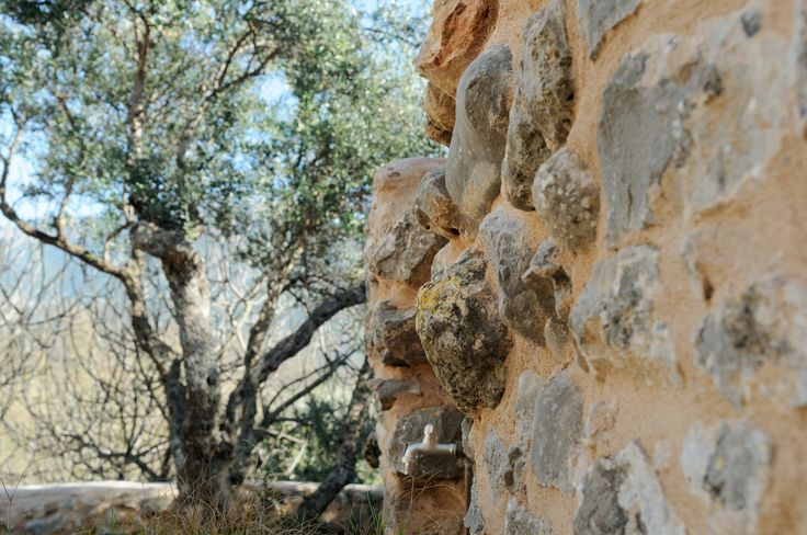 Outdoors #detail #garden #Eleanthi