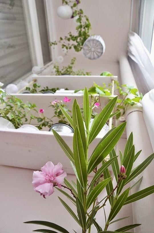 El antes y despu s de un balc n peque o con encanto - Balcones pequenos con encanto ...