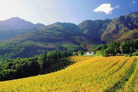 Franschoek, cape winelands