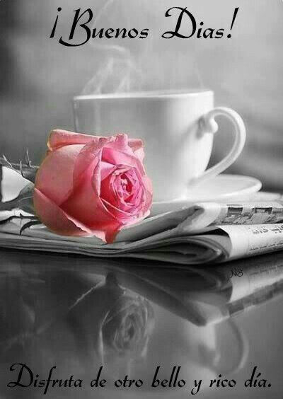 ¡Buenos Días! Disfruta de otro bello y rico día.