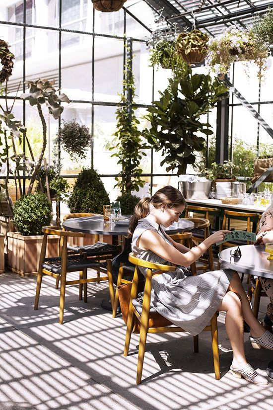 i took victoria and my DLF team to the recently opened commissary restaurant at the line hotel and it was such a treat: hanging plants, beautiful glassware, and delicious food made for the perfect pla