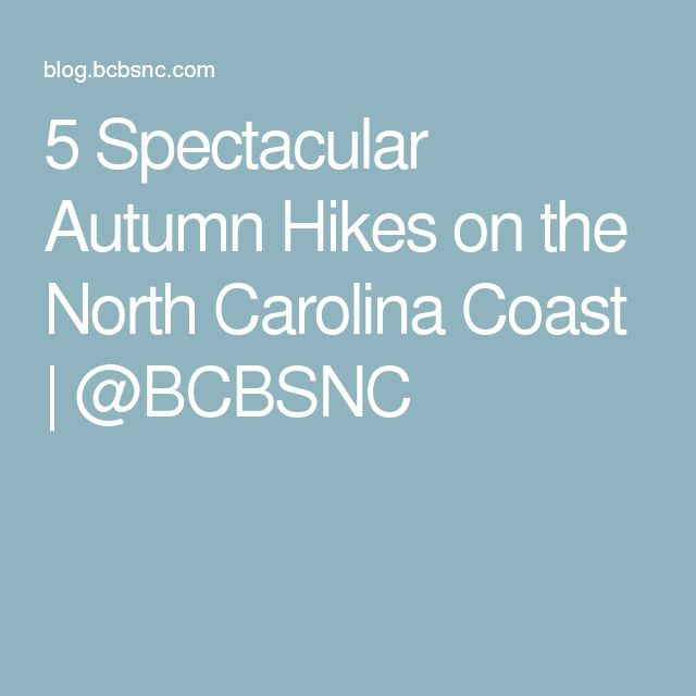 5 Spectacular Autumn Hikes on the North Carolina Coast | @BCBSNC