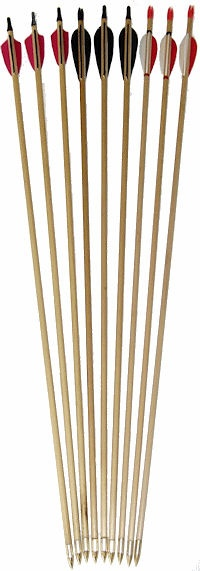 Wooden arrows - for sale or diy kit - great website for all archery stock.