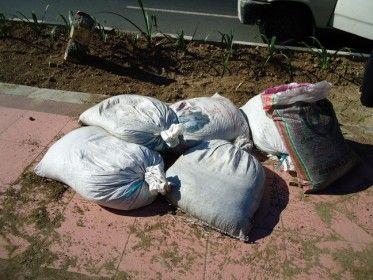 Pengadaan pupuk organik oleh Dinas Kebersihan dan Pertamanan (DKP) , Kabupaten Sidoarjo anggaran Tahun Anggaran 2013 menyimpang jauh dari..