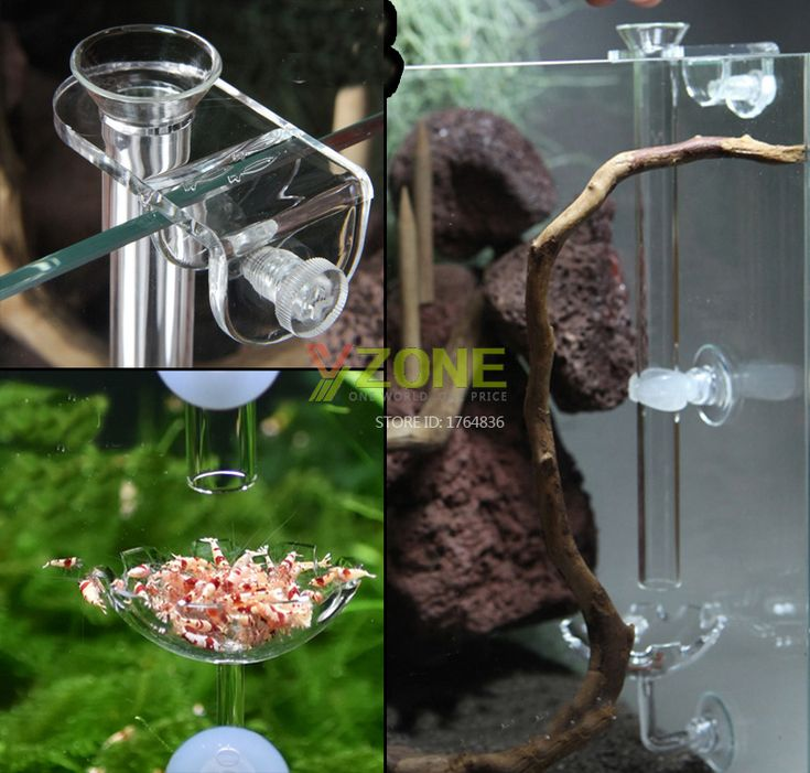 Red Bee Shrimp Fish Feeder With Long Tube, Tank-Sucked Acrlic Schrimp Dish With Glass Feeder Pipe. Yesterday's price: US $14.56 (11.93 EUR). Today's price: US $6.55 (5.41 EUR). Discount: 55%.