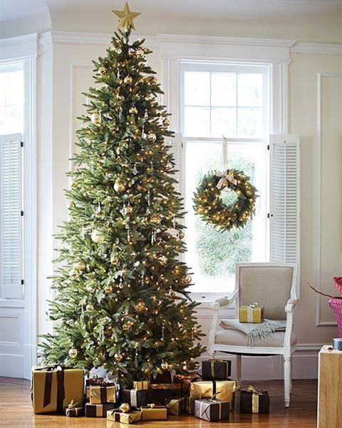 Whether you place it in an entryway, luxury loft, or living room, the Silverado Slim Christmas tree is a vision of splendor and sophistication. The sleek, statuesque profile of this artisan tree delivers elegance even in narrow spaces. #ChristmasIs #BalsamHill