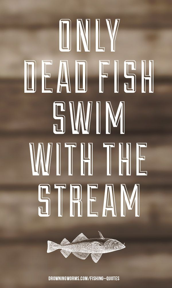 Best 25 fish quotes ideas on pinterest art anxiety for Inspirational fishing quotes