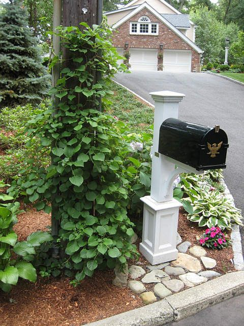 17 Best Ideas About Mailbox Landscaping On Pinterest
