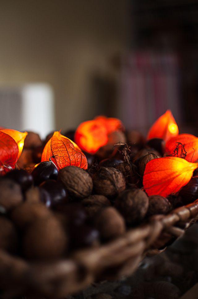 Zum Herbst passen stimmungsvolle Lichter - zum Beispiel mit Physalis-Blüten. Einfache Anleitung, wie man eine Lichterkette selber machen kann.