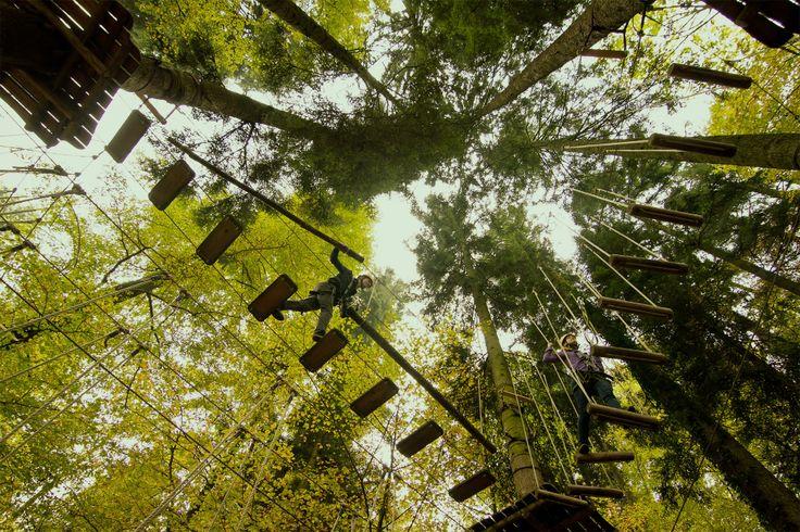Kletterwald Prien am Chiemsee - Der Klettergarten mit über 110 Übungen verteilt auf 13 Parcours