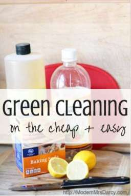 Green cleaning on the cheap (and easy). Making the switch to nontoxic cleaners is easier and cheaper than you think.